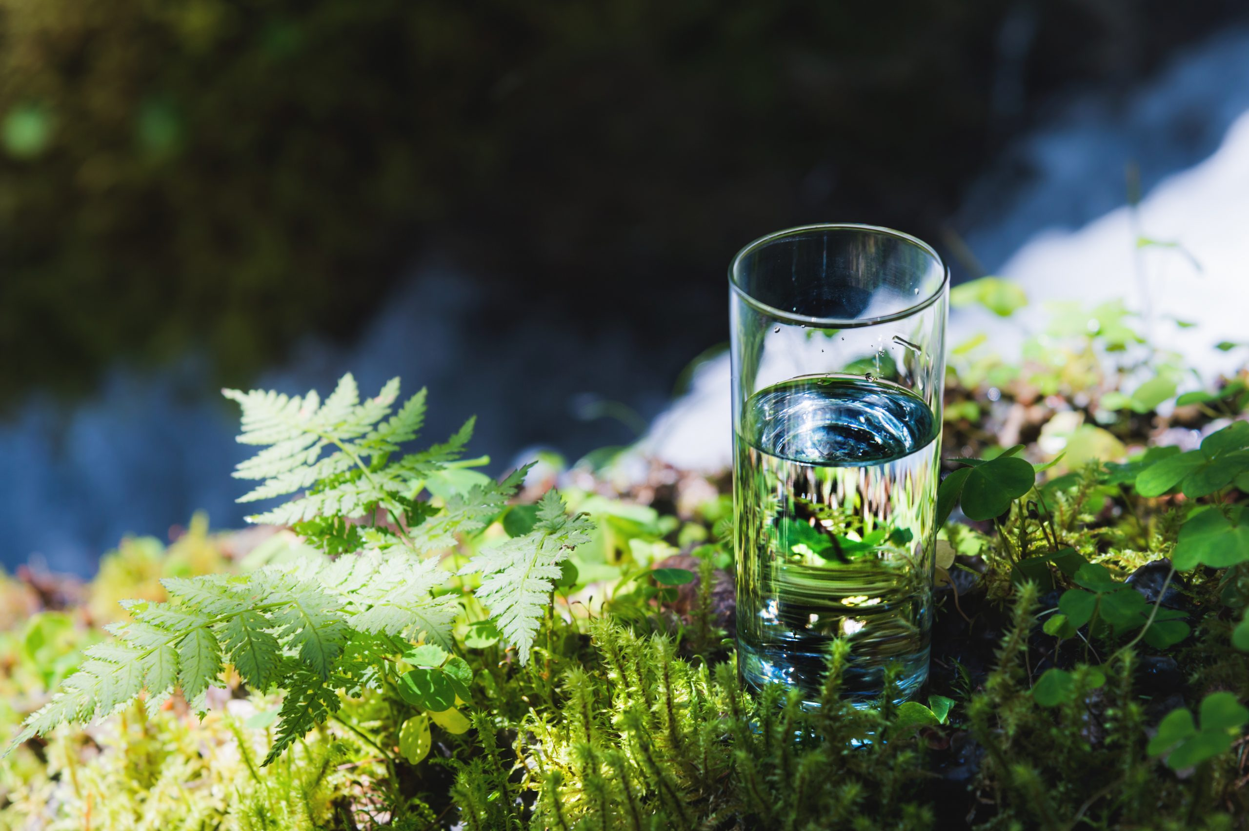 Clear water in a clear glass against a background of green moss with a mountain river in the background. Healthy food and environmentally friendly natural water.